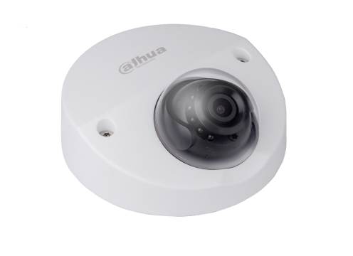 2 MP Full HD WDR Starlight Waterproof IR Dome IP Kamera-Sesli